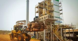 proyecto-de-biomasa-pindo-ubicado-en-puerto-esperanza-renovar-1-0